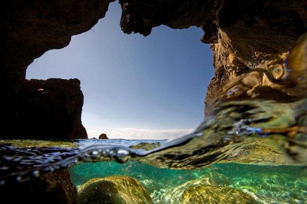 профессиональная фотография гиппопотама, выпрыгивающего из воды