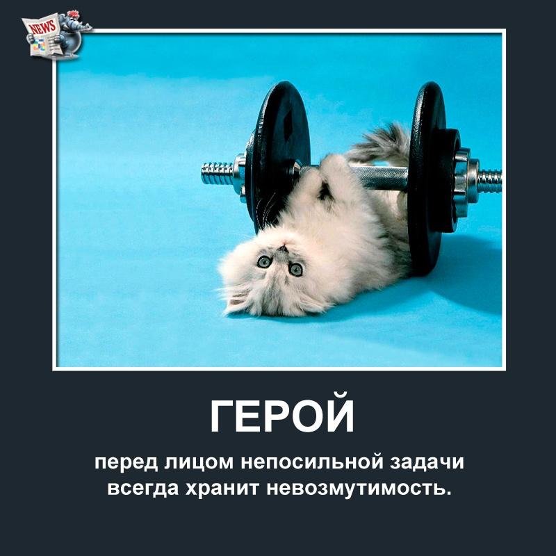 Мотиваторы от