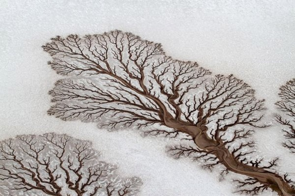 Река в пустыне Baja California