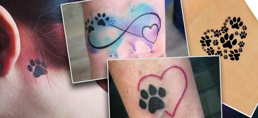 Варианты тату в виде кошачьих следов на разных частях тела