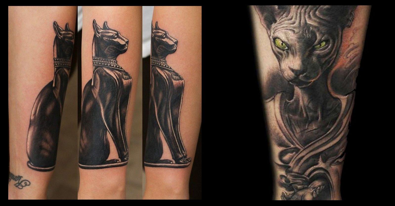 Варианты татуировок котов сфинксов