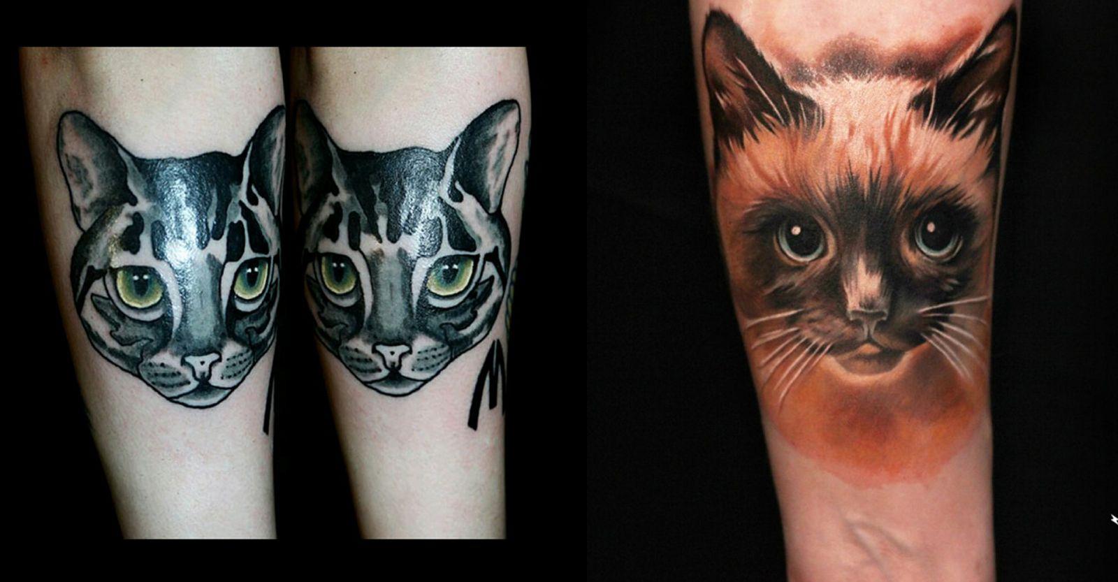 Варианты цветных татуировок с кошачьими головами