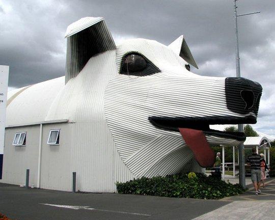 44. Здание Собаки. Новая Зеландия