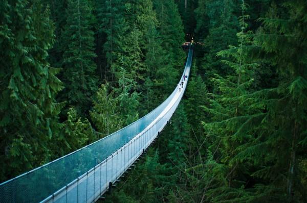 «Подвесной мост Капилано в Ванкувере», фото: MICHELLE LEE