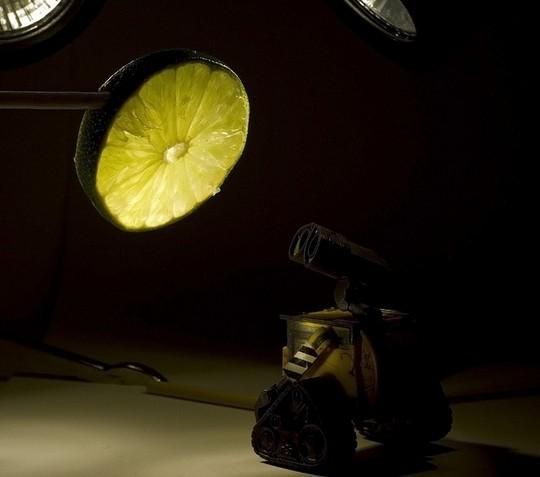 Удивленный валли смотрит на лимон