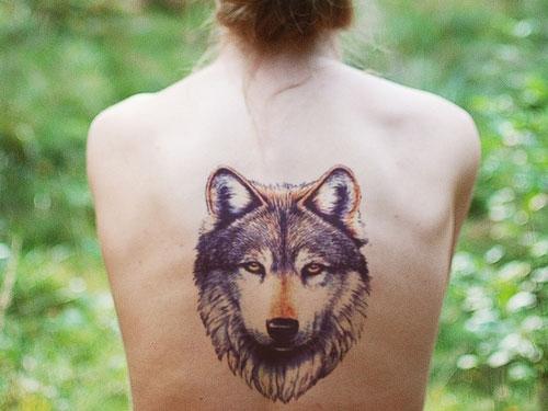 Девушка с татуировкой волка на спине
