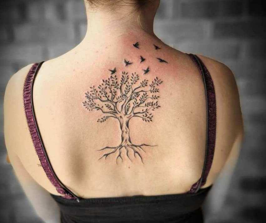 тату дерево жизни и птицы на спине