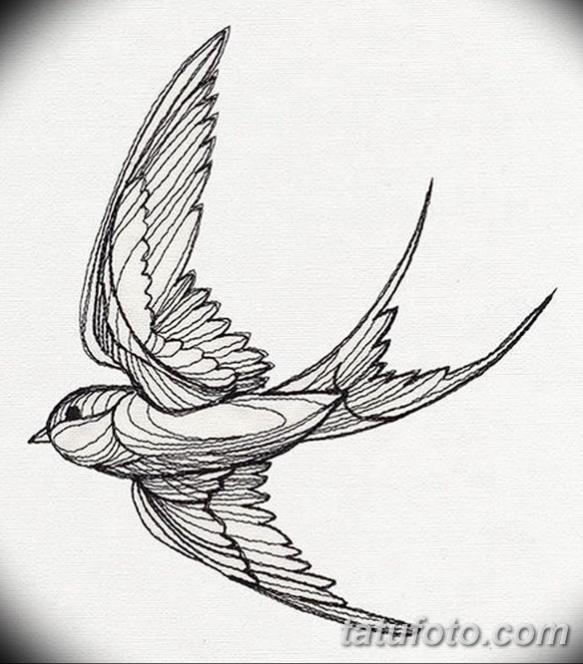 Тату эскизы птицы