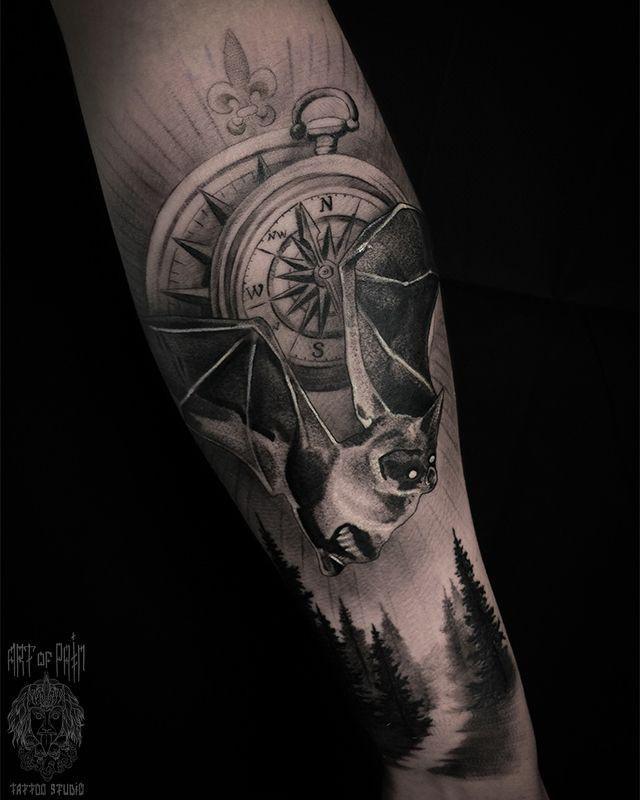 Летучая мышь и компас